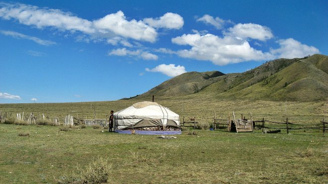 Volunteer Abroad in Mongolia