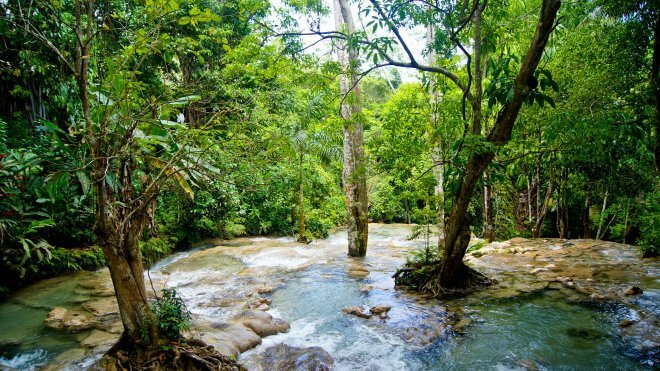 Caribbean Hiking / Hiking in Jamaica - Waterfall Hike