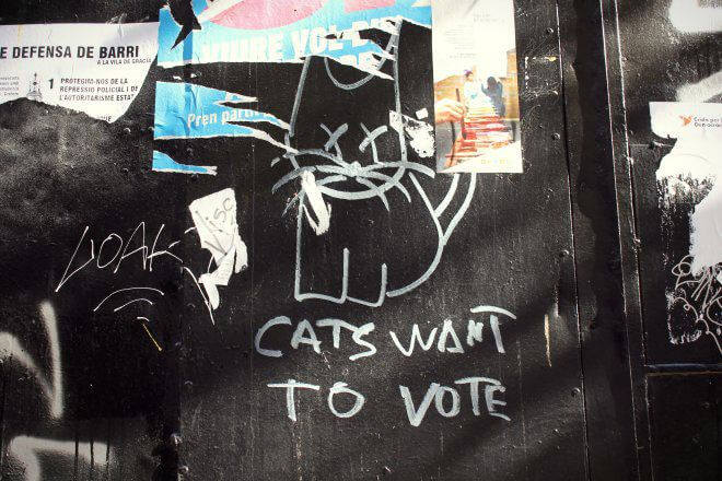 Catalan Independence in Barcelona - Yep, Even Cats Want to Vote!