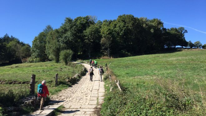 To Each Their Own Camino de Santiago